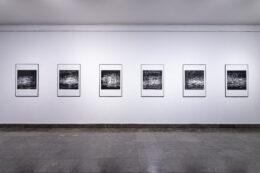 Tematem zdjęcia jest cykl prostokątnych, pionowych, oprawionych fotografii wiszących na białej ścianie w dolnej sali galerii. Wszystkie są czarno-białe na białych passpartout. Przedstawiają skomplikowane konstrukcje z białych cienkich linii i drobnych plamek na czarnym tle.