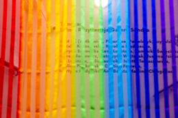 Pierwszy plan fotografii wypełnia półprzejrzysta pasiasta tkanina w kolorach tęczy. Pionowe paski są naprzemiennie bezbarwne, przejrzyste oraz kolorowe i nieprześwitujące. Za tą swego rodzaju zasłoną, bądź firaną, majaczą czarne napisy na ścianie. Ich treść stanowi tytuł wystawy i nazwiska jej uczestniczek.