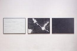 Zdjęcie przedstawia złożoną z trzech obrazów pracę Jakuba Borkowicza wiszącą na białej ścianie. Trzy prostokątne obrazy wiszą w jednej linii. Obraz z lewej strony przedstawia białą powierzchnię a z prawej czarną. Pomiędzy nimi jest obraz przedstawiający czarno-białą abstrakcyjną kompozycję. Te obrazy powstały w wyniku performansu jaki wykonał artysta. Performance polegał na rzucaniu piłeczkami zanurzonych wcześniej w farbie (białej lub czarnej). Ślady odbić utworzyły abstrakcyjne wzory na powierzchni.